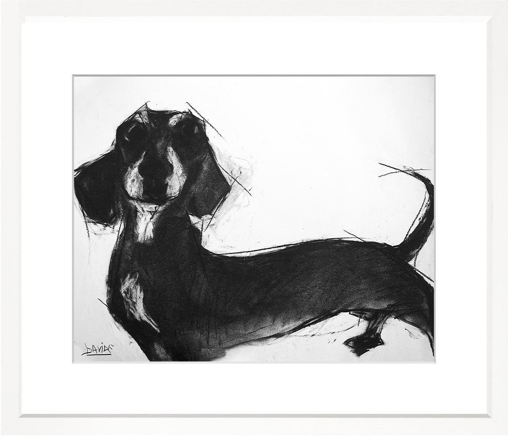 Dogs - WS373-212