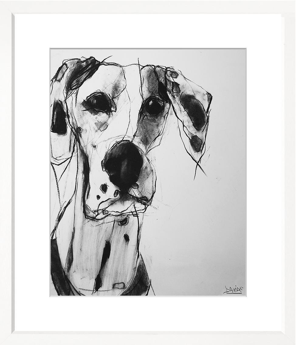 Dogs - WS386-212