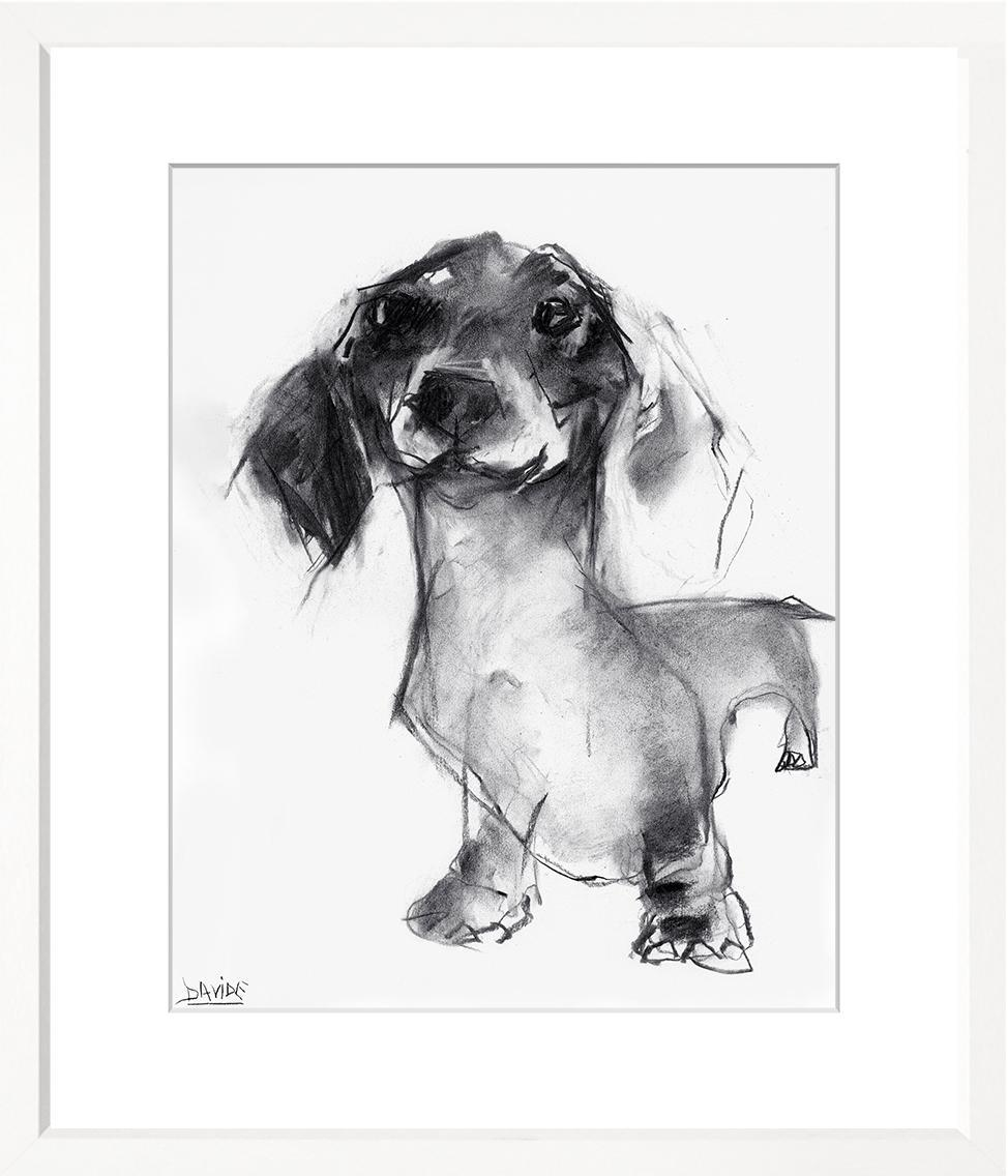 Dogs - WS390-212
