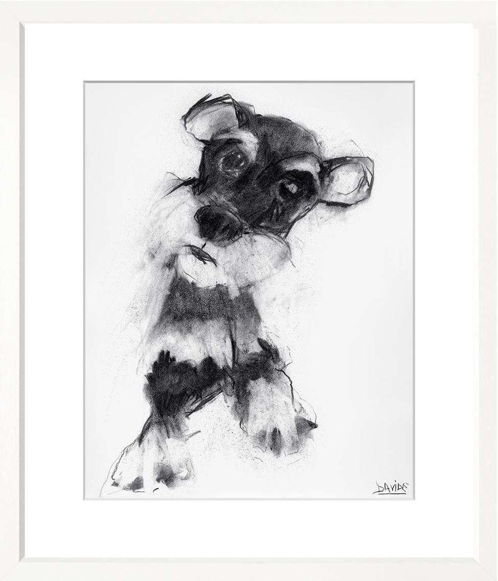Dogs - WS391-212